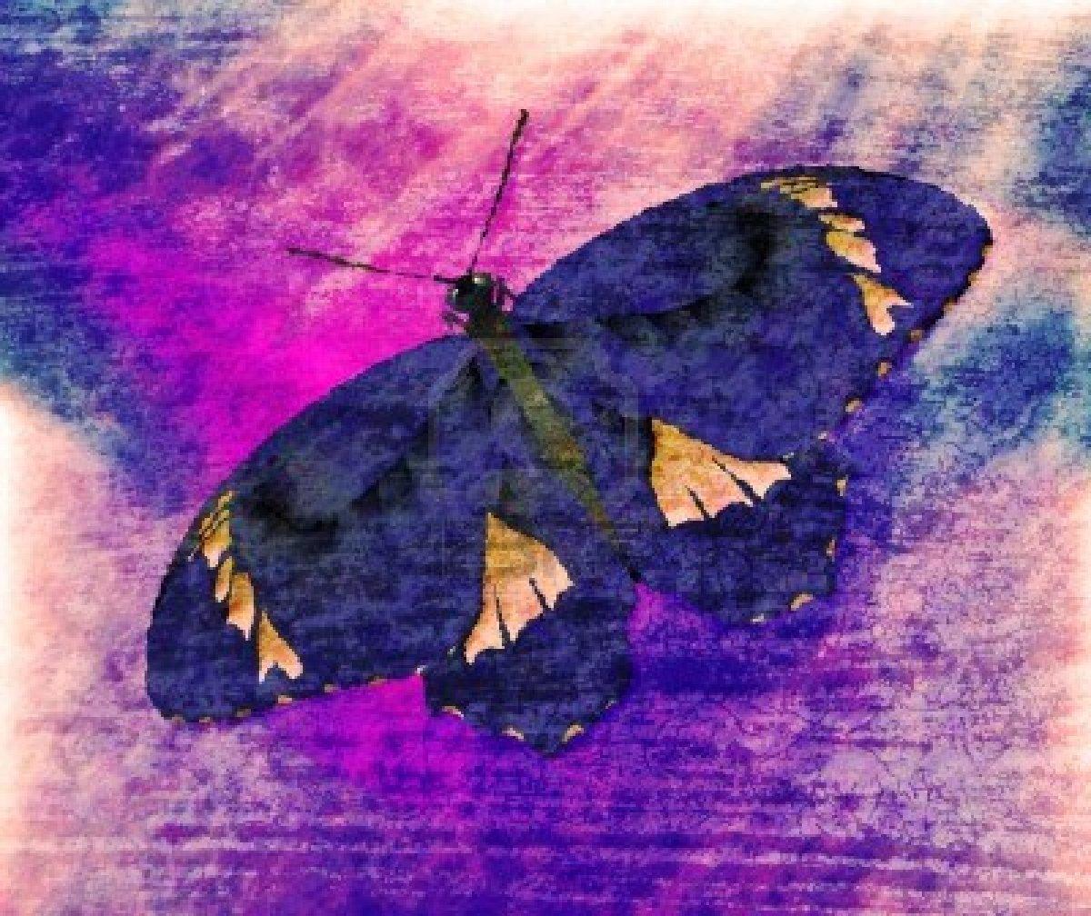 14564098-butterfly-painting-art-monet