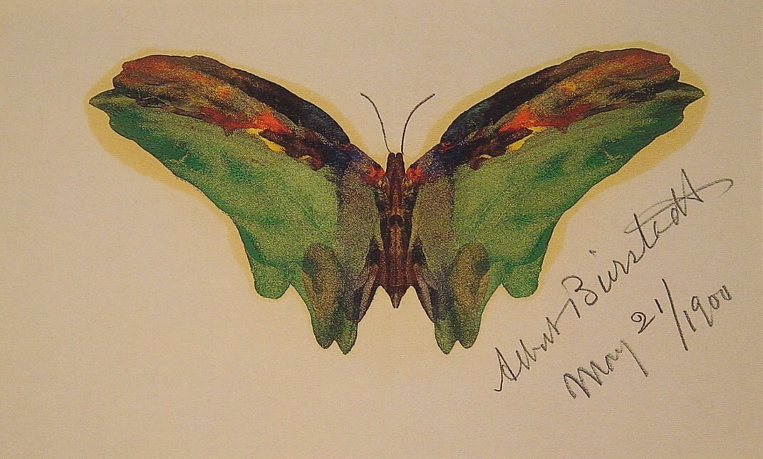 Albert Bierstadt- Butterfly, 1904