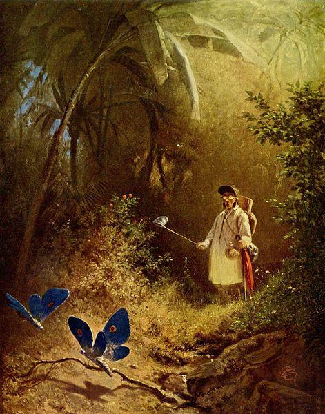 Carl Spitzweg, Der Schmetterlingsjäger